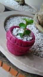 Mini vasinhos de resina coloridos para suculentas e mini plantas jardins coleção