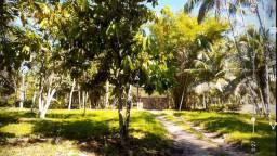 Sitio em região de metropolitana de Moju-pa
