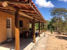Chácara 4.000m2 com lindo pomar produzindo e escritura na mão em Itaguara/MG