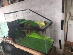 Aquaterrario e aquários