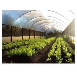 Lona estufa agrícola transparente 150 micras própria pra flores e hortaliças