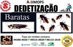Carrapatos, baratas, ratos e formigas, cupins, Dedetização Serv. Especializados de empresa