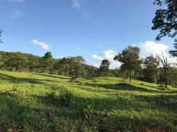 Fazenda 67 alqueires pecuária em Caldas Novas