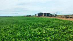Fazenda à venda, 7500000 m² por R$ 28.000.000,00 - Bairro Rural - Feliz Natal/MT