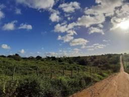 Fazenda Conceição da Feira BA 220 tarefas perto Cidade. Oportunidade