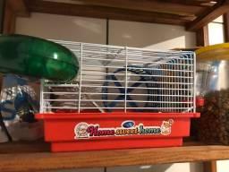 Hamster anão russo + acessórios