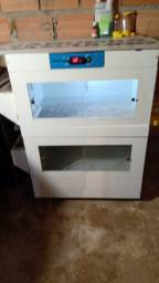 Criadeira  da chocmaste com capacidade  para 200 pintinhos toda com temperatura controlada
