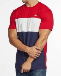 Título do anúncio: Camisa Lacoste importada pima