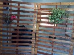 Biombo de madeira envernizado