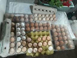Ovos galados de galinha caipira e ornamentais