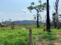 1.985 Há. Toda Formada | Sao Felix do Xingu-PA.
