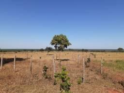 Sítio 12.3 hectares