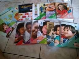 Livros 1* ano sistema de ensino sucesso
