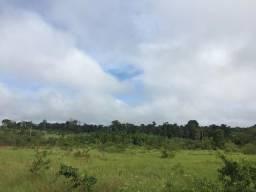 Vendo terreno na PA-252 no km34 ramal Mário Fernandes