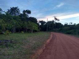Sítio 22.000 no Rio Preto da Eva km 80 ramal cachoeira