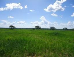 Fazenda com 13.300ha pra Irrigação, na Regiao de Pirapora