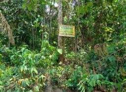 Vendo terreno no Acutuba