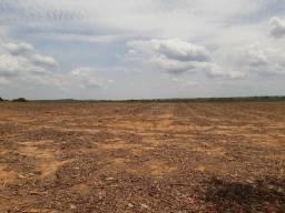 Fazenda para arrendamento soja 2.500 hectares