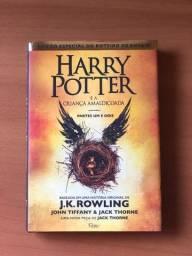 Livro - Harry Potter E A Criança Amaldiçoada