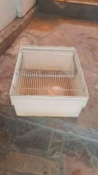 caixa para roedor