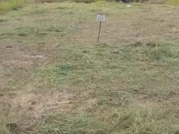 Vendo terreno Vila Acre