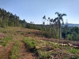 Terra em Cabriuva pavera , de 4,2 hectares,