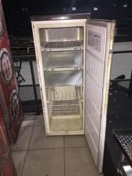 Freezer Vertical R$300,00