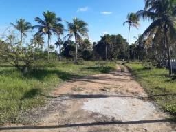 Sitio à venda em localização privilégiada no Município de Alhandra