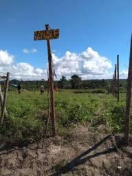 Vendo 1 tarefa de terra no pau seco região de humildes_Feira de Santana-ba