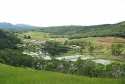 Fazenda em Itajaí - Sítio