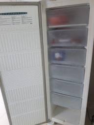 Freezer Vertical Fross Free
