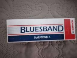 Gaita harmônica bluesband nova