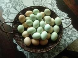 Ovos caipira.