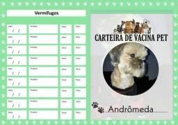 Cartão de vacina pet