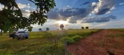 Excelente Terreno com 1800 m² - Na zona Rural de Jaraguari - à 26 km do Shopping Ipê.
