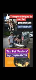 Táxi Transporte Pet