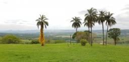 Excelente sitio para venda em Franca no Jardim Eden, com 24 alqueires, 1,6 km do asfalto,