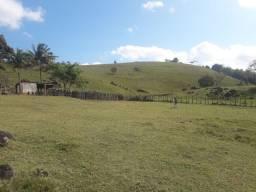 Fazenda com 53 hectares