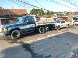 Caminhão D20