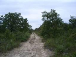 18 alqueres Miracema do Tocantins