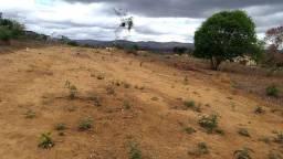 Terrenos Loteados - excelente localização e preço