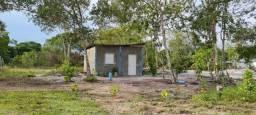 Terreno com uma pequena casa dentro 20 x 60 Br 174 com acesso ao igarapé