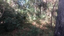 Pandolfo Vende Terreno No parque Eldorado