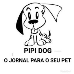 Pipi dog (guarapari)