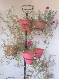 Suporte para plantas Horta Vertical comporta 12 vasos