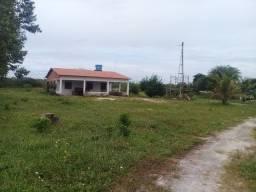 ST-320 |Sítio | 32.4 hectares | Cascavel - Córrego do Muriti - CE