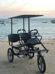 Triciclo Dream Bike