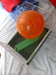 Gaiola e bola para hamster