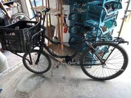 Bicicleta carqueira *