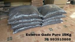 Esterco Gado Puro 10Kg Entrego em BH